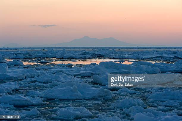 ice floes at sea of okhotsk, rausu, hokkaido, japan - drift ice stock pictures, royalty-free photos & images