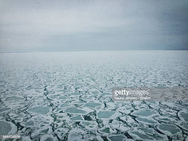 Ice Floes Floating On Sea