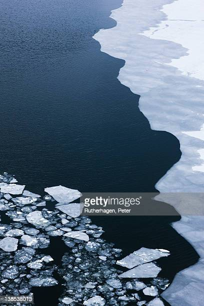 Ice floes floating on sea surface