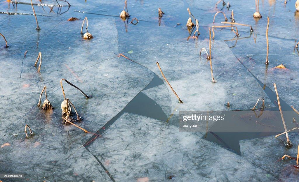 Ice floes floating on the West Lake,Hangzhou,Zhejiang,China : Stock Photo