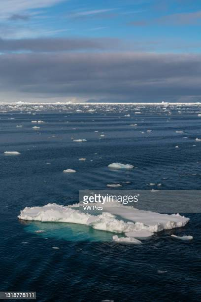 Ice floes in the Erik Eriksenstretet, strait separating Kong Karls Land from Nordaustlandet, Svalbard Islands, Norway.