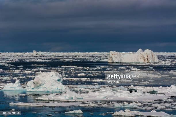 Ice floes in the Erik Eriksenstretet, strait separating Kong Karls Land from Nordaustlandet..