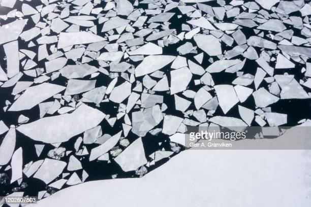 ice floes - ice floe stock pictures, royalty-free photos & images