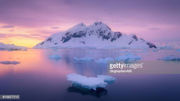 ice glacier floating in the lagoon with the snowcapped mountain sunset at antarctica - glacier lagoon stock photos and pictures