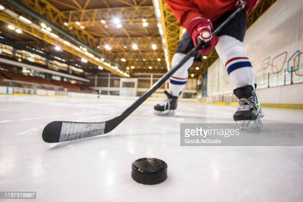 ice hockey - ice hockey stock pictures, royalty-free photos & images