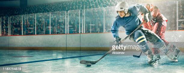 ice hockey player in action - ice hockey player stock pictures, royalty-free photos & images