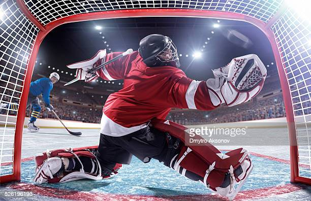 ice hockey player scoring - goalkeeper stock pictures, royalty-free photos & images
