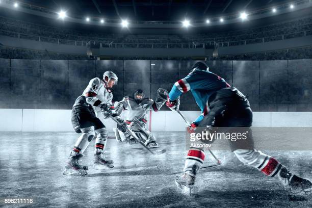 ice hockey players on big professional ice arena - face off sports play stock photos and pictures