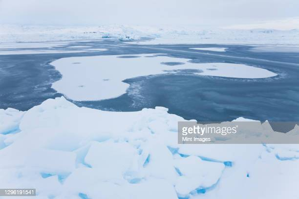 ice in fjord, tiilerilaaq, south eastern greenland - pack ice stock pictures, royalty-free photos & images
