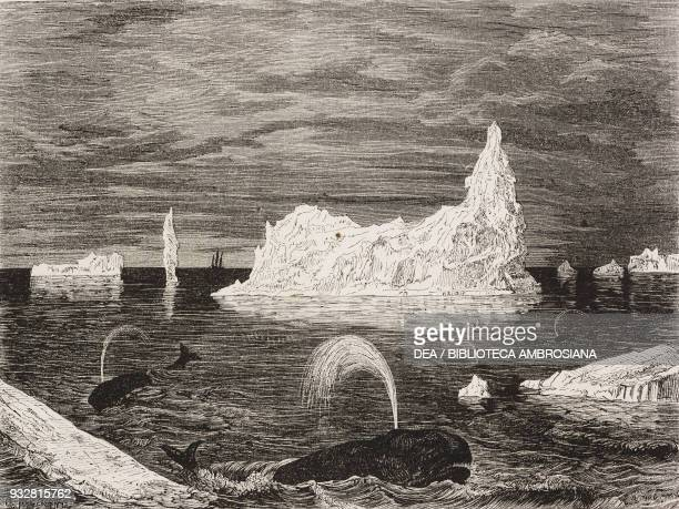 Ice island on the Newfoundland banks Canada drawing by Paul Huet from a sketch by M Deville from Il Giro del mondo Journal of geography travel and...