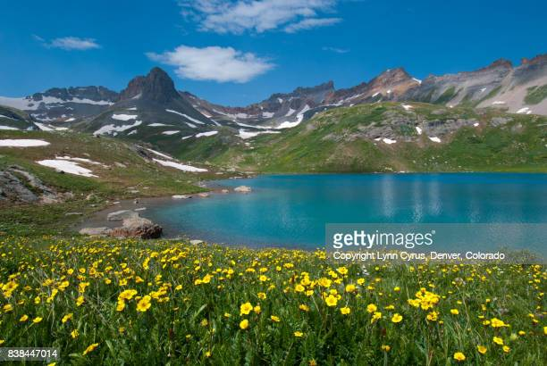 ice lake summer landscape - san juan mountains stock photos and pictures
