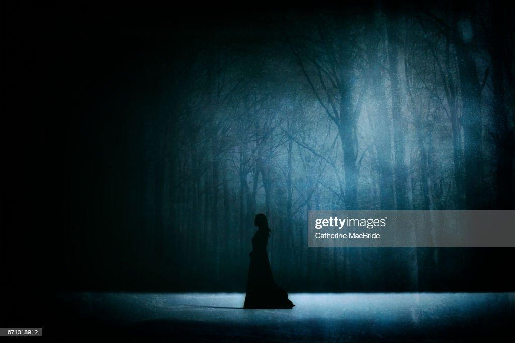 Ice Maiden... : Stock Photo