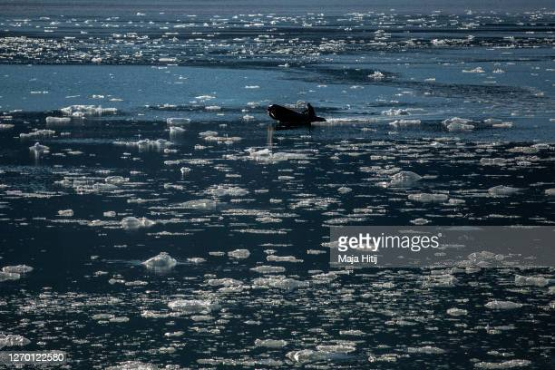 Ice melts near Nordenskjodbreen glacier as man past by with a boat on August 25 2020 on the Norwegian Arctic Svalbard archipelago Norway...