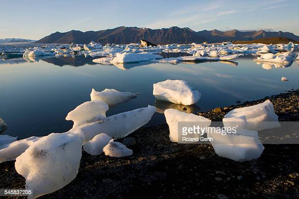 ice on shore, jokulsarlon, iceland - austurland stock pictures, royalty-free photos & images