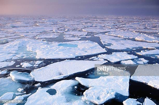 Ice patterns in arctic sea, summer