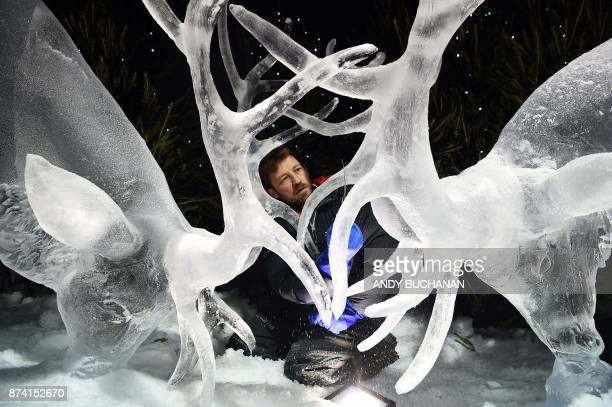 Ice sculptor Darren Jackson puts the finishing touches to an ice sculpture of two stags which makes up part of a forthcoming exhibition 'The Ice...