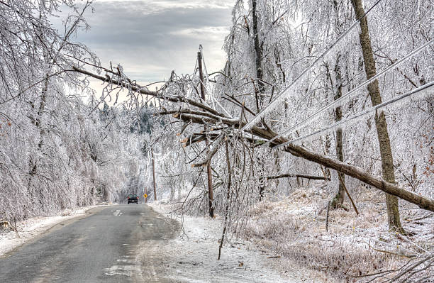 ice storms and severe winter storms essay