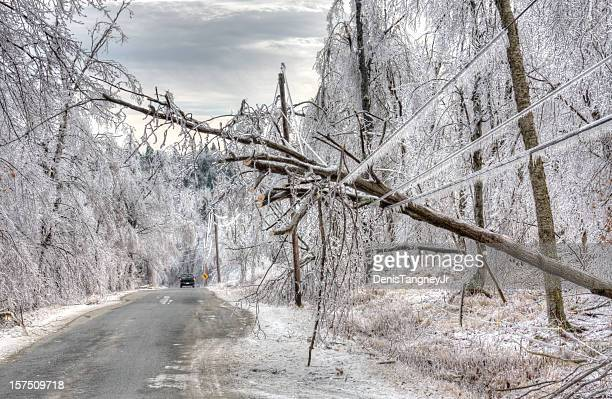 ice storm damage - storm stock pictures, royalty-free photos & images