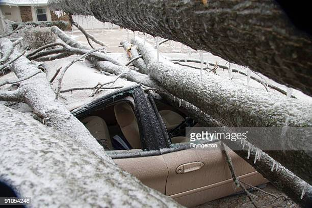 Ice Storm took out Car
