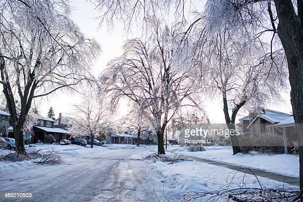 Ice storm, Toronto, Ontario, Canada