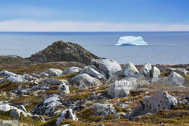 Iceberg and Landscape