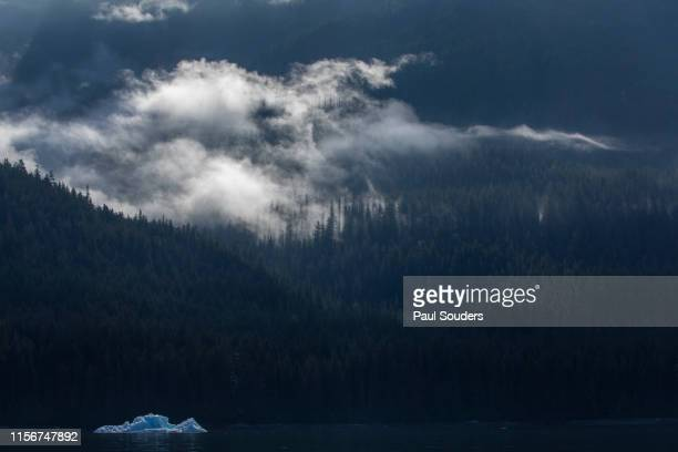 Iceberg and Mist-Covered Forest in Tracy Arm, Juneau, Alaska