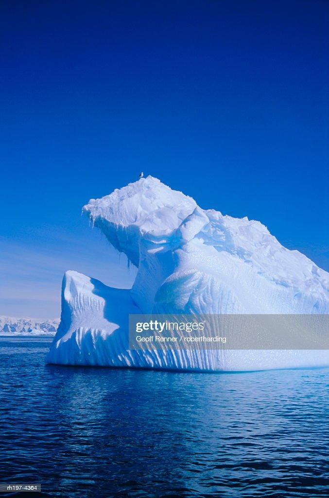 'Iceberg, Antarctica, Polar Regions' : Foto de stock