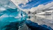 Iceberg floats in Andord Bay on Graham Land, Antarctica.