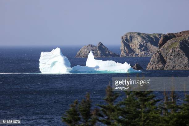iceberg in newfoundland, next to rocky cliffs - newfoundland and labrador stock pictures, royalty-free photos & images
