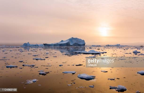 iceberg near greenland in the sunset - arctic stock pictures, royalty-free photos & images
