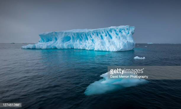 iceberg sits still on a calm day in antarctica - polar stock pictures, royalty-free photos & images