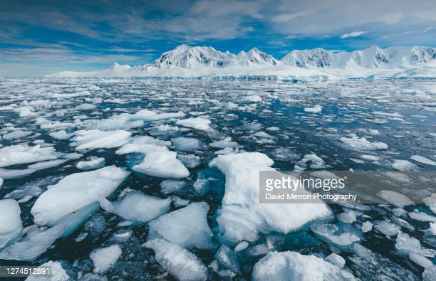 iceberg sits still on a calm day in antarctica - ijsschots stockfoto's en -beelden