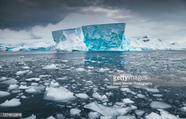 iceberg sits still on a calm day in antarctica - rechauffement climatique photos et images de collection