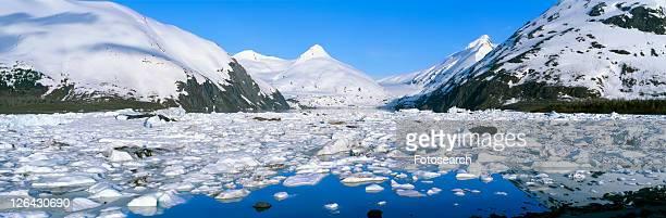 Icebergs and glacier