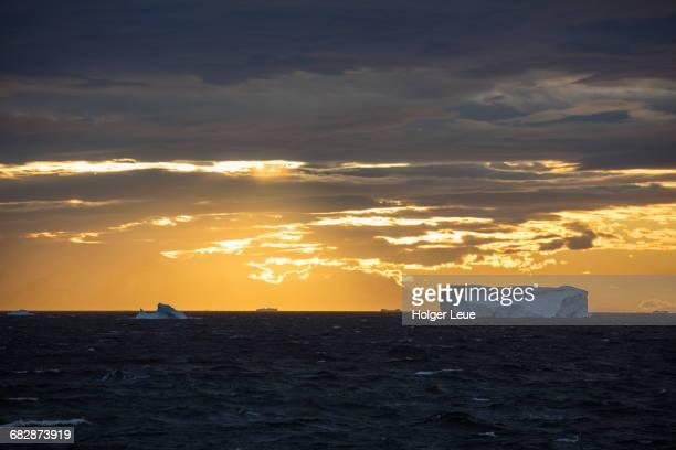Icebergs at sunset