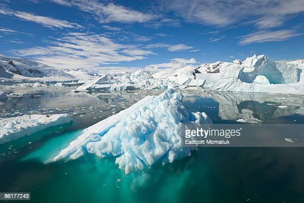 Icebergs, Collins Bay, Antarctic Peninsula