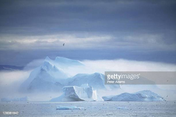 icebergs, disko bay, greenland - peter adams stock pictures, royalty-free photos & images