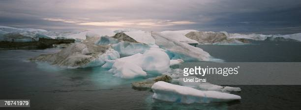 Icebergs float in the water near the village of Ilimanaq August 26 Greenland Scientists believe that Greenland with its melting ice caps and...
