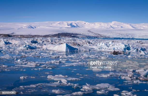 Icebergs floating in the Jokulsalon glacier lagoon in Iceland.