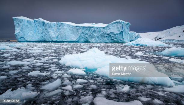 icebergs floating in the sea in antarctic greenland. - global warming stock pictures, royalty-free photos & images