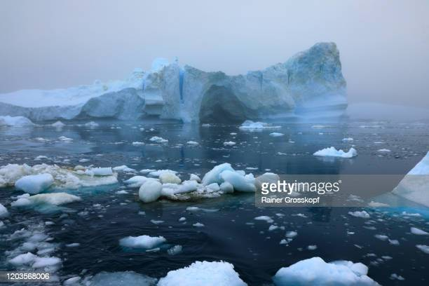icebergs floating in the sea on a foggy and cloudy day - rainer grosskopf stock-fotos und bilder