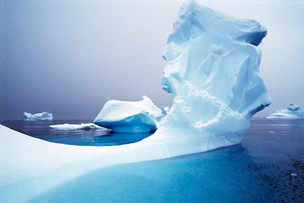 Icebergs floating on Antarctic peninsula