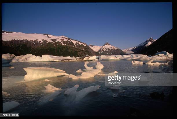 Icebergs From Portage Glacier Scattered in Portage Lake