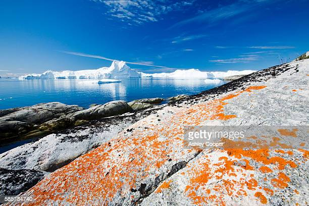 Icebergs from the Jacobshavn glacier or Sermeq Kujalleq drains 7% of the Greenland ice sheet and is the largest glacier outside of Antarctica. It calves enough ice in one day to supply New York with water for one year. It is one of the fastest moving glac