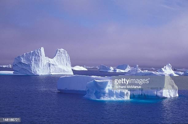 icebergs in antarctica - south orkney island stock pictures, royalty-free photos & images
