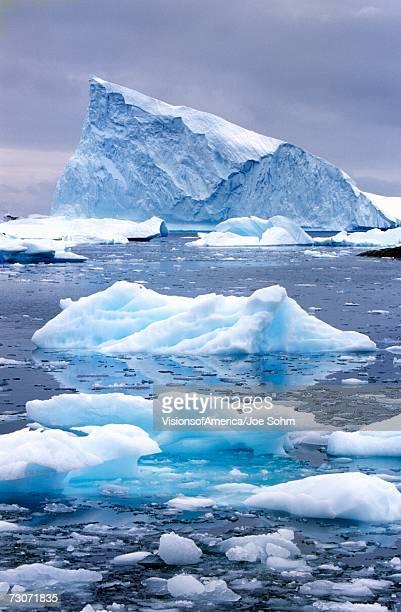 """""""icebergs in paradise harbor, antarctica"""" - oceano antartico foto e immagini stock"""