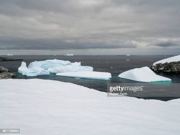 icebergs in petermann island - antarctic peninsula stock pictures, royalty-free photos & images