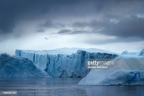 icebergs in the ilulissat icefjord - iceberg ice formation stock pictures, royalty-free photos & images