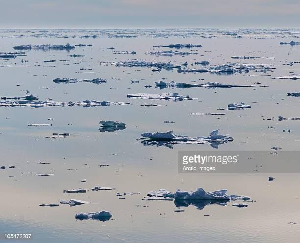 Icebergs melting, Hinlopen Strait
