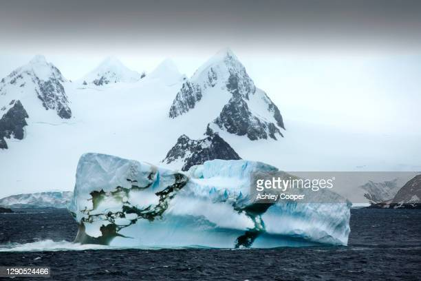 icebergs off the south orkney islands, just off the antarctic peninsular. - south orkney island stock pictures, royalty-free photos & images